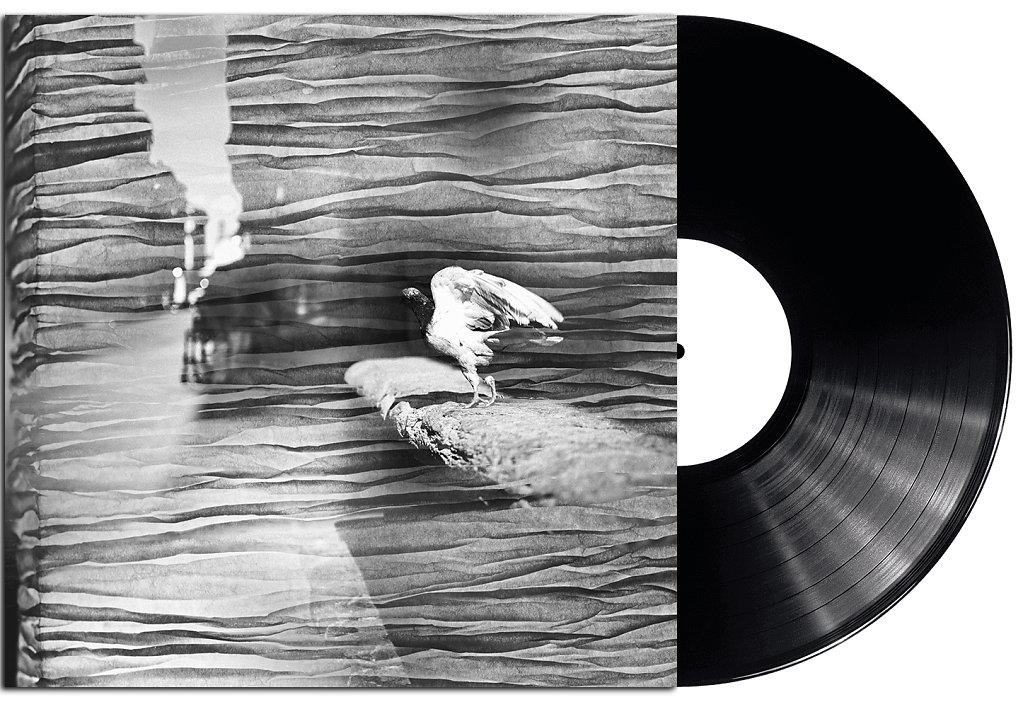 record1.jpg